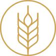 Barley Icon - Environmental Sustainability Promotion